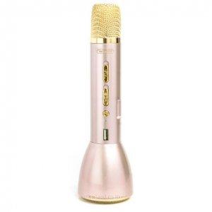 Микрофон и спикер WK WT-K10 золотой