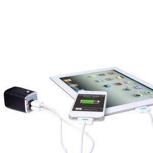 Сетевое зарядное устройство IWALK Dolphin черное