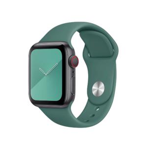 Ремешок Coteetci W3 зелёный для Apple Watch 42/44 мм